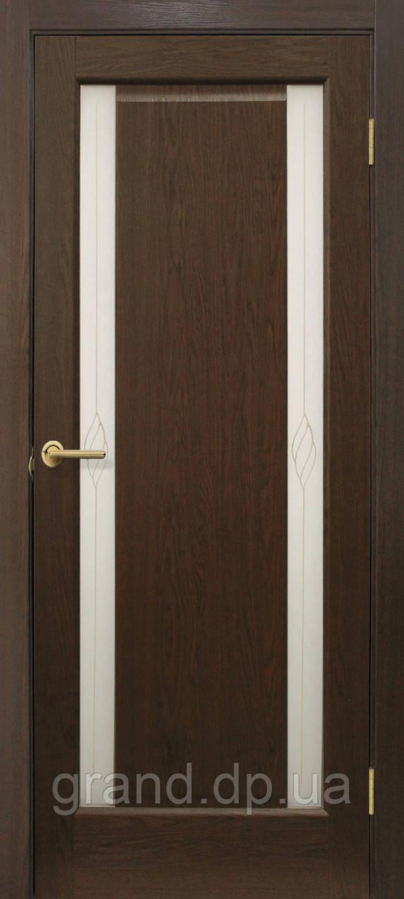 """Дверь межкомнатная """"Венера СС+КР ПВХ"""" с контурным рисунком, цвет каштан"""