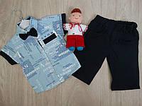 """Набор """"Manhattan"""" двойка с шортами + бабочка для мальчика голубой р.2-4 лет"""