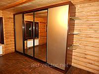 Двери с зеркалом сатин
