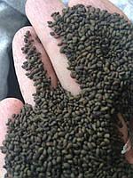 Люцерна семена 150 гр