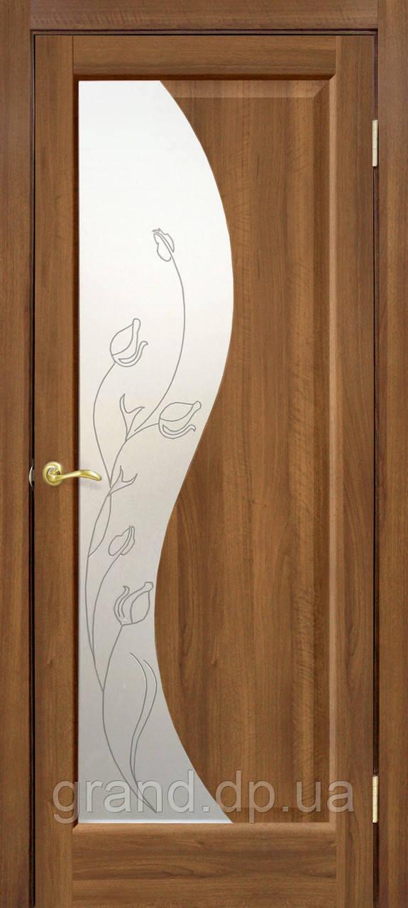 """Дверь межкомнатная """"Эльза ПВХ"""" со стеклом и рисунком, цвет ольха европейская"""