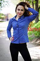 Рубашка длинный рукав, выточки, клетка синяя