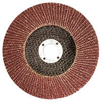 Круг лепестковый торцевой, P 25, 125 х 22, 2 мм MTX