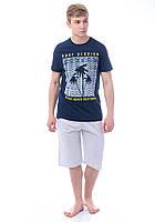 Мужской комплект футболка с шортами Турция