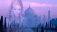 Концентрат для масляных духов Индийские мечты  100 мл