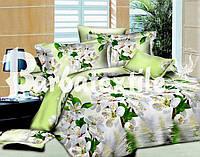 """Комплект постельного белья Евро двуспальный, ранфорс 3D """"Салатовое утро на озере"""""""