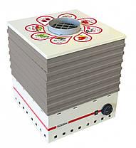 Електро сушка ProfitM ЕСП1 820вт 35л.(белый), фото 3