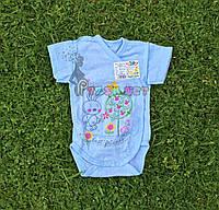 Бодик для новорожденных 100% хлопок (рибана) 56, 62, 68, 74 р-р, голубой, фото 1