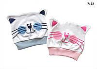 """Шапочка """"Котик"""" для малыша, размер 36-40 см"""