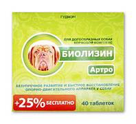 Биолизин Артро для догообразных собак 40 табл.