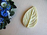 Молд лист сирени 8 на 5 см, 50 грн, фото 2
