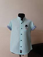 Рубашка светло-голубая, 9-12 лет