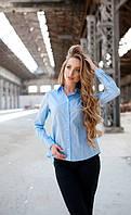 Женская хлопковая рубашка до длинного рукава с воланом на спинке