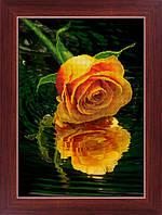 """Наборы для рисования камнями 5D (частичная выкладка на холсте) """"Роза над водой"""" LasKo 5D-032"""