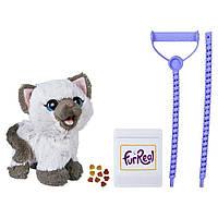 Интерактивная игрушка Hasbro Fur Real Friends Забавный котёнок Ками (C1156), фото 1