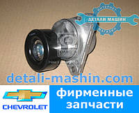 Натяжитель ремня Авео (T250, T255) 1.5(INA) Aveo,Daewoo 534 0290 10