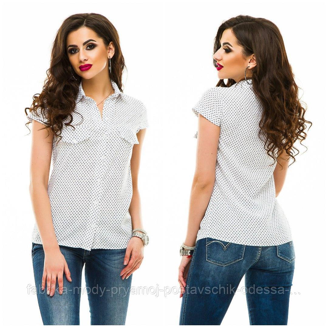 Рубашка недорого №241