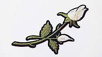 Аппликация (термо) больш. розы 2 бутона  молочн. 16х6 см