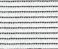 Сетка TENAX для защиты строительных лесов  'КОВЕРЕТ H' 1,8х100 белая 90% затенения