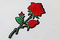 Аппликация (термо) больш.  розы  3 бутон. красн. 16,5х7,7 см