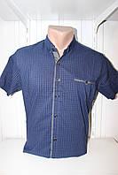 Рубашка мужская CORM короткий рукав, мелкая клетка №2, стрейч котон 003 \ купить рубашку оптом.