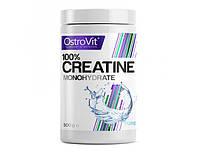 100% Creatine Monohydrate 500gramm