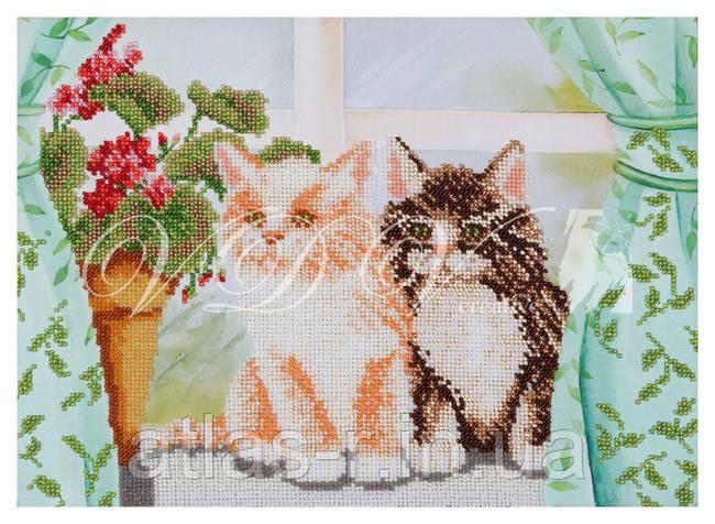 """Схема для вишивки бісером """"Котики"""""""