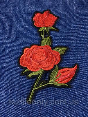 Нашивка Роза 3 бутона  цвет красный, фото 2