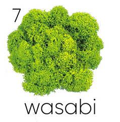 Стабилизированный мох. Цвет Artis Wasabi 07