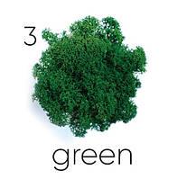 Стабилизированный мох. Цвет Artis Green 03