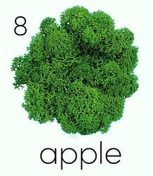 Стабилизированный мох. Цвет Artis Apple 08