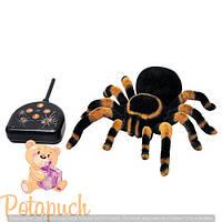 Радиоуправляемы Паук тарантул RT 781