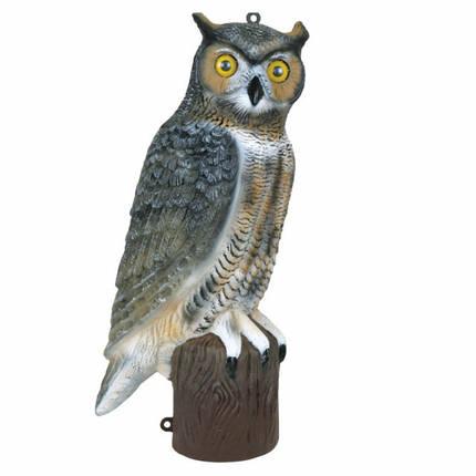 Чучело филина Owl 21 Flambeau , фото 2