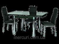 Стол стеклянный  + 4 стула