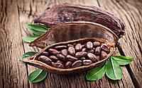 Какао-бобы 250 грамм