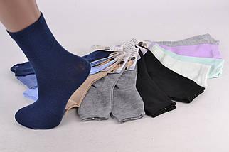 Детские носки однотонные р.31-33 (Арт. C0163/XL) | 12 пар, фото 2