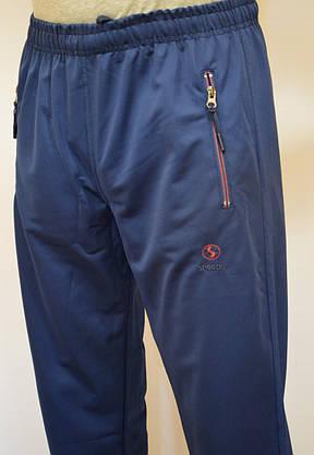 Мужские спортивные штаны SHOOTER(лакоста) 3652, фото 2
