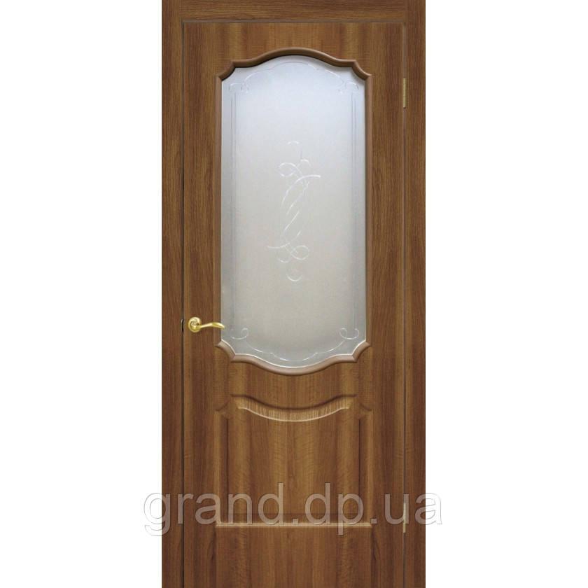 """Дверь межкомнатная  """"Прима ПВХ"""" с рисунком на стекле, цвет ольха европейская"""