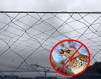 Агро-сетка для защиты урожая от птиц и других вредителей