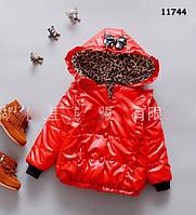 Демисезонная куртка для девочки. 2 года, фото 1
