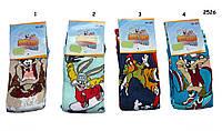 Детские носки Looney Tunes для мальчика. р.31-34