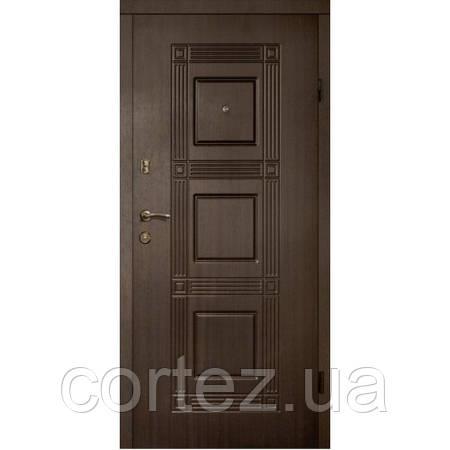 Двери входные стандарт 313