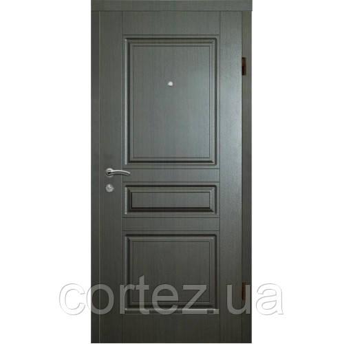 Вхідні двері Преміум 314