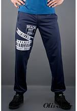 Мужские спортивные штаны Рико синий