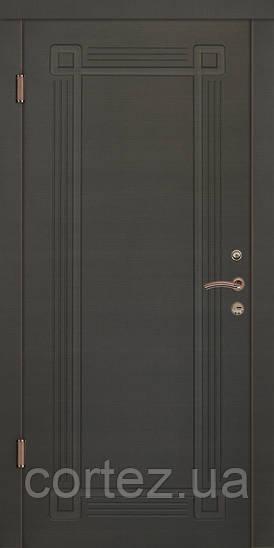 Входные двери стандарт Алмарин