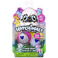 Hatchimals CollEGGtibles: Набор из гнезда и двух коллекционных фигурок в яйце (в ассортименте)