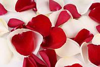 Хлопушки праздничные, разные виды, 60 см лепестки роз