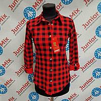 Рубашка  на девочку подростковая MARINEX.ПОЛЬША, фото 1