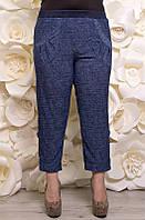 Капри большого размера Джинс, капри летние большого размера, трикотажные капри большого размера, капри женские 58, джинс