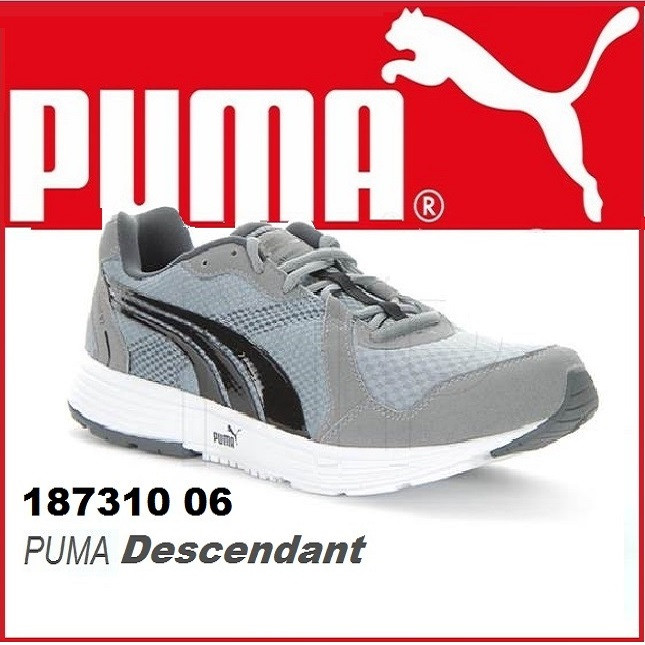 Кроссовки мужские Puma Descendant V2  (Оригинал)
